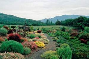 Photograph of rural home landscape design by Naturescape Designs landscape designer